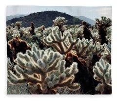 Cholla Teddy Bear Cactus Garden Landscape Fleece Blanket