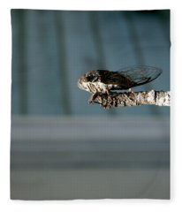 Cicada Fleece Blanket