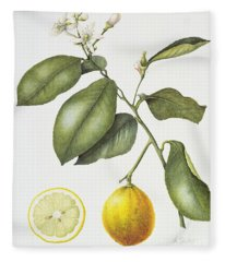 Citrus Bergamot Fleece Blanket