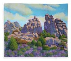 City Of Rocks Fleece Blanket