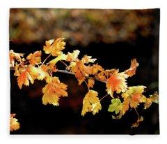 Classic Colors Fleece Blanket