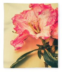 Classical Pastel Flower Clipping Fleece Blanket