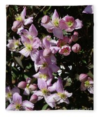 Clematis Montana  In Full Bloom Fleece Blanket