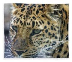 Close Up Of Leopard Fleece Blanket