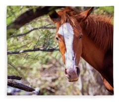 Closeup Of Beautiful Wild Horse With Copy Space Fleece Blanket
