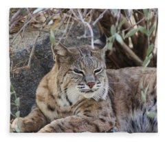Closeup Of Bobcat Fleece Blanket