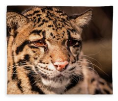 Clouded Leopard II Fleece Blanket
