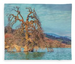 Clouds Above Flooded Tree Fleece Blanket