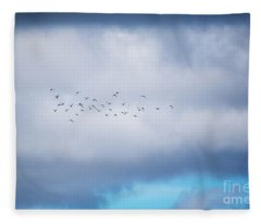Clouds And Ducks Fleece Blanket