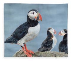 Clowns Of The Sea. Fleece Blanket