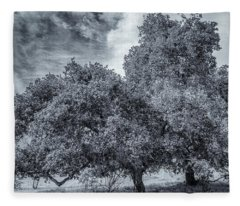 Coast Live Oak Monochrome Fleece Blanket