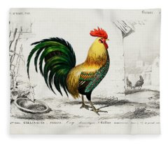 Cock Illustrated By Charles Dessalines D Orbigny Fleece Blanket