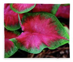 Caladium Variation Fleece Blanket