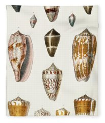 Collection Of Various Shells Fleece Blanket