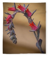 Color And Curve Fleece Blanket