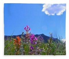 Colorado Colors Fleece Blanket