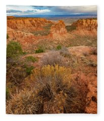 Colorado National Monument, Grand Junction, Colorado Fleece Blanket
