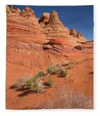 Colorado Plateau Sandstone Fleece Blanket