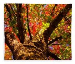 Colorful Autumn Abstract Fleece Blanket
