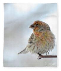 Colorful Finch Eating Breakfast Fleece Blanket