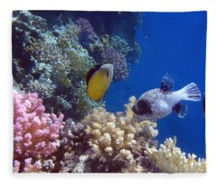 Colorful Red Sea Fish And Corals Fleece Blanket