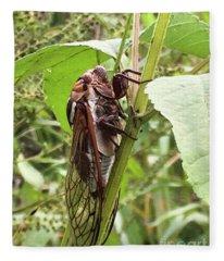 Colorful Summer Cicada Fleece Blanket