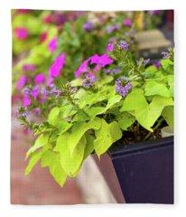 Colorful Summer Flowers In Window Box Fleece Blanket