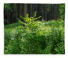 Colors Of A Forest In Vogelsberg Fleece Blanket