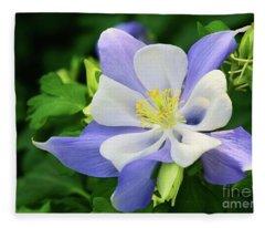 Columbine Lavender Fleece Blanket