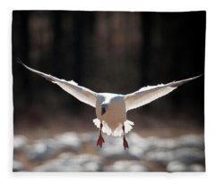 Coming Down Fleece Blanket