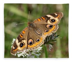 Common Buckeye Butterfly Close-up Fleece Blanket