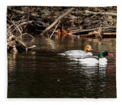 Common Mergansers Fleece Blanket