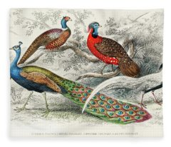 Common Peacock, Ringed Pheasant, Horned Pheasant And Silver Pheasant Fleece Blanket