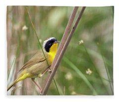 Common Yellowthroat In The Marsh Fleece Blanket