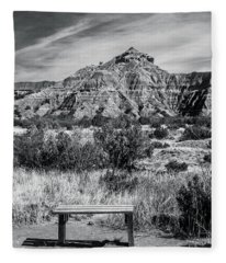 Contemplation Bench Bw Fleece Blanket