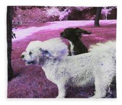 Cool Breeze In Pink Fleece Blanket