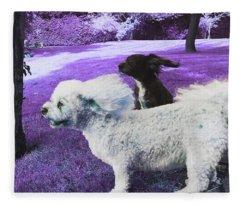 Cool Breeze In Violet Fleece Blanket
