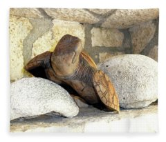 Coral And Turtle Decor Fleece Blanket