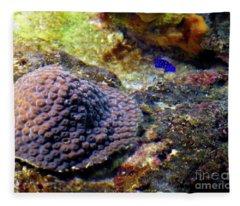 Coral Art Cu 3 Fleece Blanket