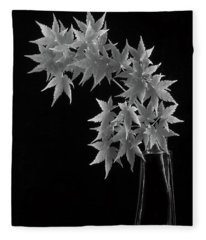Coral Bark Maple Fleece Blanket