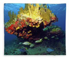 Coral Reef Scene, Calf Rock, Virgin Islands Fleece Blanket