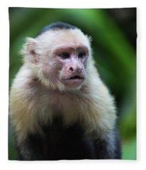 Costa Monkey 1 Fleece Blanket