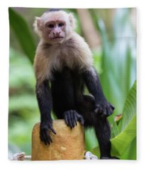 Costa Monkey 2 Fleece Blanket