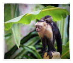 Costa Monkey Mama Fleece Blanket