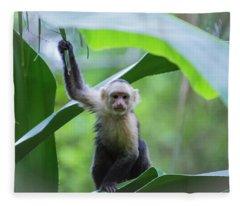 Costa Rica Monkeys 1 Fleece Blanket
