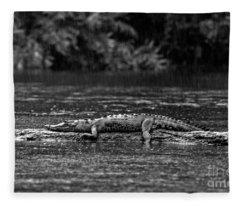 Costa_rica_25-17 Fleece Blanket
