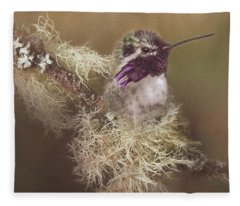 Costas Hummingbird Painted Fleece Blanket