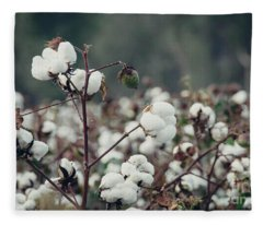 Cotton Field 5 Fleece Blanket