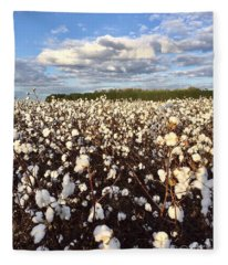 Cotton Field In South Carolina Fleece Blanket