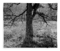 Coulee Oak Fleece Blanket